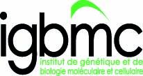 IGBMC2009.jpg